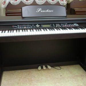 PAMCHINCO電鋼琴(00)